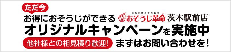 original-campaign-banner