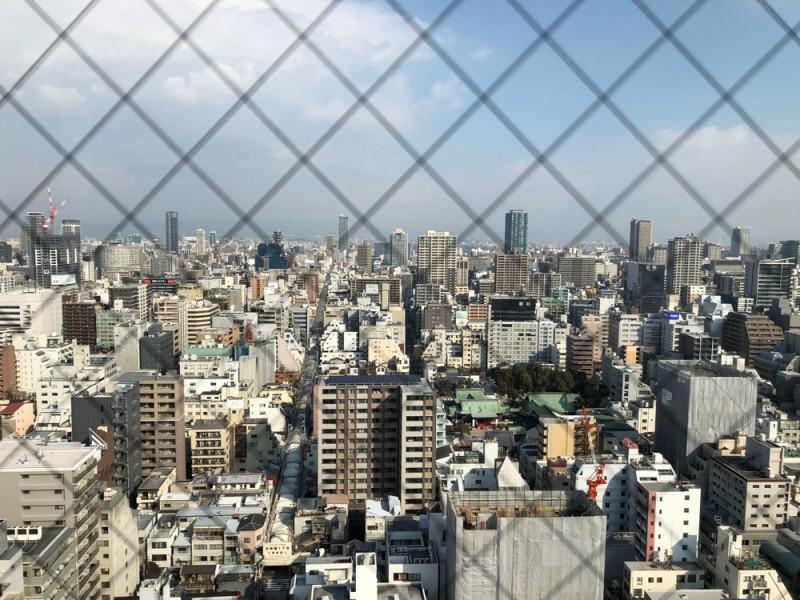 高層タワーからの眺め